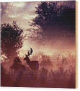 Fallow Deer In Fairytale World Wood Print