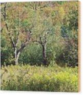 Fallow Meadow Wood Print