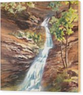 Falls At Hocking Hills Wood Print