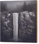 Falls By Moonlight Wood Print by Crispin  Delgado