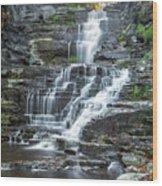 Falls Creek Gorge Trail Ithaca New York Wood Print