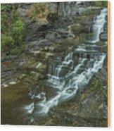 Falls Creek Gorge Trail Wood Print