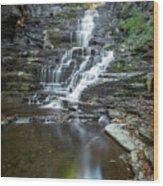 Falls Creek Gorge Trail Reflection Wood Print