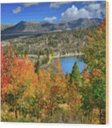 Fall's Finery At Rock Creek Lake Wood Print