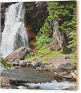 Falls Glacier National Park1 Wood Print