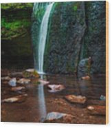 Falls In Bluff Country Wood Print