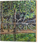 Falls Lake In July Wood Print