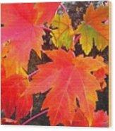 Falltime ...  Wood Print