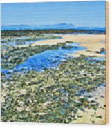 False Bay Low Tide Wood Print by Jan Hattingh