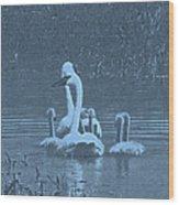 Family Swim Wood Print