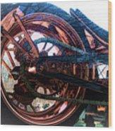 Famous Liberty Bike Copper Ny Wood Print
