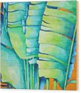 Fan Palm With Orange 2 Wood Print