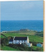 Fanad Lighthouse, Fanad, County Donegal Wood Print