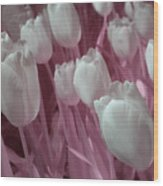 Fanciful Tulips In Pink Wood Print