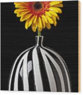 Fancy Daisy In Stripped Vase  Wood Print