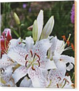 Fancy White Lily In Garden Wood Print