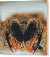 Fangs Wood Print