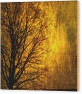 Fantasy Dawn Wood Print
