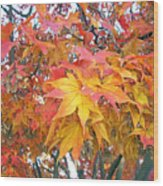 Fantasy Of Fall Wood Print