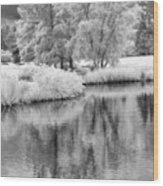 Fantasy Tree Reflection Wood Print