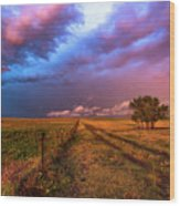 Far And Away - Open Prairie Under Colorful Sky In Oklahoma Panhandle Wood Print