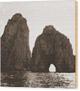 Faraglioni In Sepia Wood Print