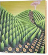 Fargesia Victualia Wood Print