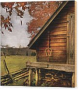 Farm - Barn - Shed Out Back Wood Print