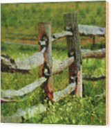 Farm - Fence - The Old Fence Post  Wood Print
