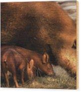 Farm - Pig - Family Bonds Wood Print