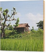 Farm And A Hut Wood Print