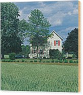 Farm House And Spring Field, Maryland Wood Print
