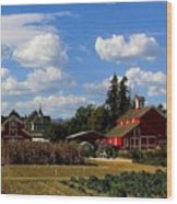 Farm House Wood Print by Scott Brown