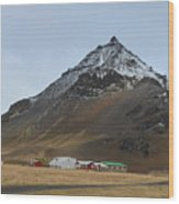 Farm Houses At The Base Of Mt Stapafell In Iceland Wood Print