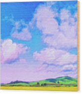 Farm Near San Luis Obispo Wood Print