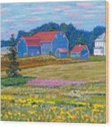 Farm On Prince Edward Island Wood Print