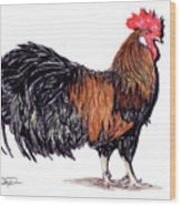 Farm Rooster Wood Print