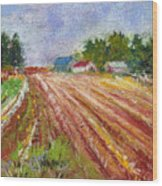 Farm Rows Wood Print