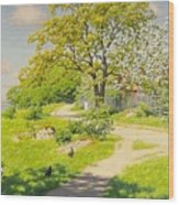 Farm Scene With Pecking Chickens Wood Print