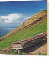 Farming In Azores Islands Wood Print