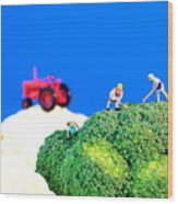 Farming On Broccoli And Cauliflower II Wood Print