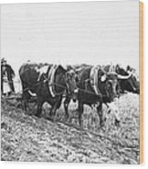 Farming: Ploughing, C1930 Wood Print