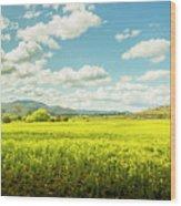 Farmland Colour Wood Print