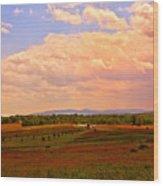 Farmland In Gettysburg Wood Print