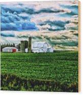 Farmland In  Hdr Wood Print