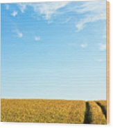 Farmland To The Horizon 1 Wood Print