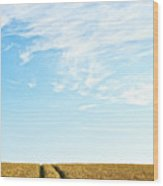 Farmland To The Horizon 2 Wood Print