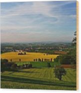 Farmland View Wood Print