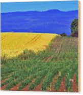 Farmlands Of The Willamette Valley Wood Print