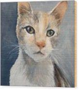 Farmyard Cat Wood Print